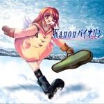 TAM3-0012 Kanonバイオリン